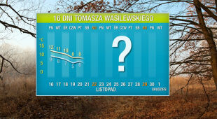 Pogoda na 16 dni: ciepło się kończy. Idzie przedzimie