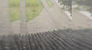 Grzmiało i padało